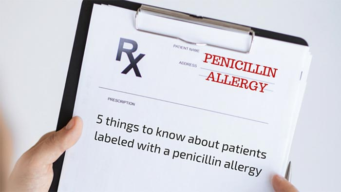 penicillin allergy facts