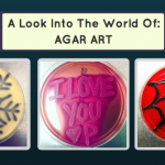 A Look Into The World Of Agar Art With Instagram's @Stylish_Streaking