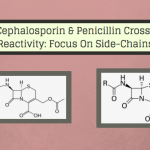 Cross-Reactivity Between Cephalosporins and Penicillins: A Story of Side-Chains