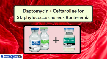 Five Things To Know About Combination Therapy With Daptomycin Plus Ceftaroline For The Treatment Of Staphylococcus aureus Bacteremia